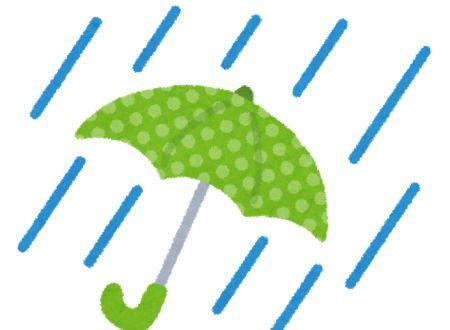 東京マラソン 雨天決行
